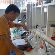 Masahito Uchikoshi munka közben